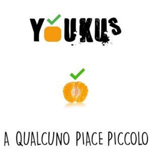 A qualcuno piace piccolo, brano di esordio di Youkus, i virtuosismi dell'ukulele editi da FlipperMusic