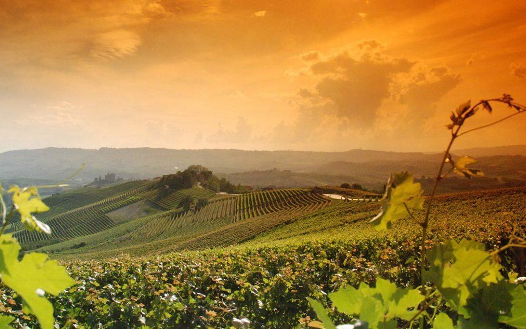 La nuova soundtrack dei nobili vini del Piemonte Duchessa Lia