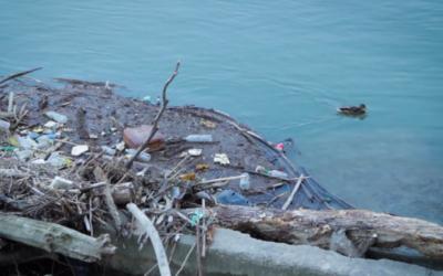 Controcorrente: lo stato dell'acqua in Italia