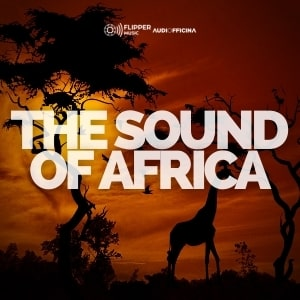 The Sound Of Africa playlist